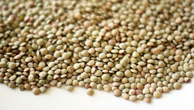 Grãos de lentilhas