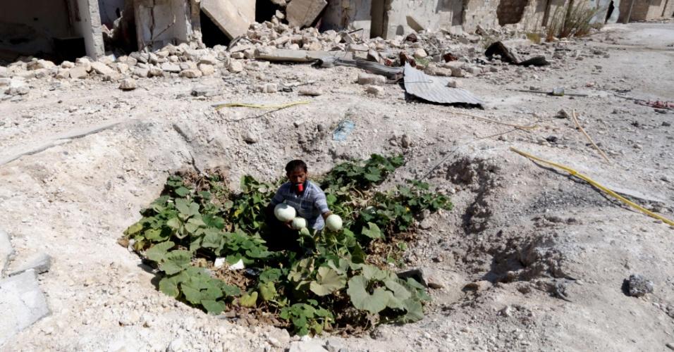 3.set.2014 - Sírio recolhe nesta quarta-feira (3) vegetais que crescem em cratera aberta por bomba lançada por forças sírias, e que atingiu um tubo de esgoto em Aleppo. A província de Aleppo foi vítima de bombardeios violentos, incluindo o uso de bombas de barril, repletas de explosivos jogados de helicópteros, e que grupos de direitos humanos afirmam matar indiscriminadamente