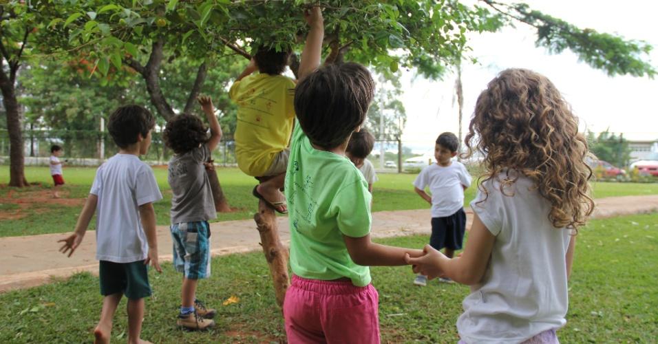 Vivendo e Aprendendo - Hora do Parque (DF)