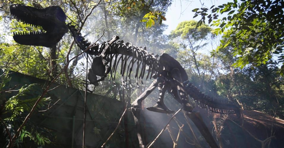9.set.2014 - Essa é uma réplica do esqueleto do Tiranossauro Rex, uma das espécies de dinossauros mais conhecidas. O nome vem do vem do grego, que quer dizer