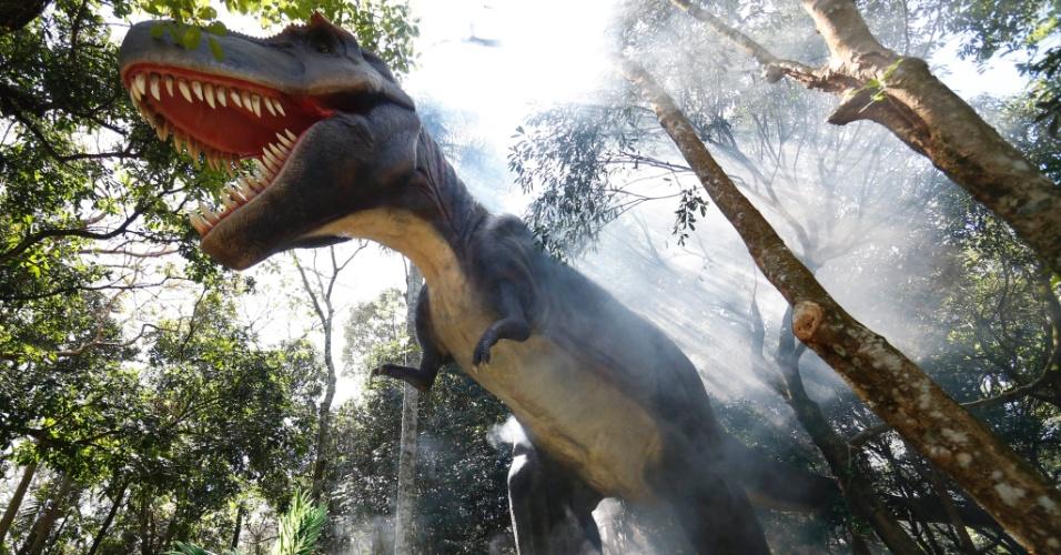 9.set.2014 - O Tiranossauro Rex é uma das espécies de dinossauros mais conhecidas. O nome vem do vem do grego, que quer dizer