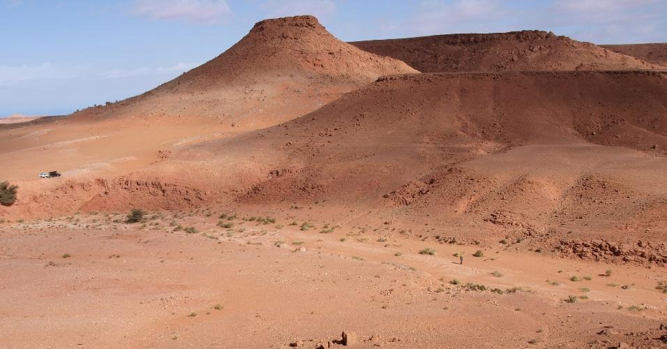 10.set.2014 - Fósseis do Spinosaurus aegyptiacus foram encontrados na região de Kem Kem, no sudeste do Marrocos. Pesquisadores descobriram que o dinossauro carnívoro, maior do que o Tyrannosaurus rex, era semiaquático, característica rara entre os dinossauros