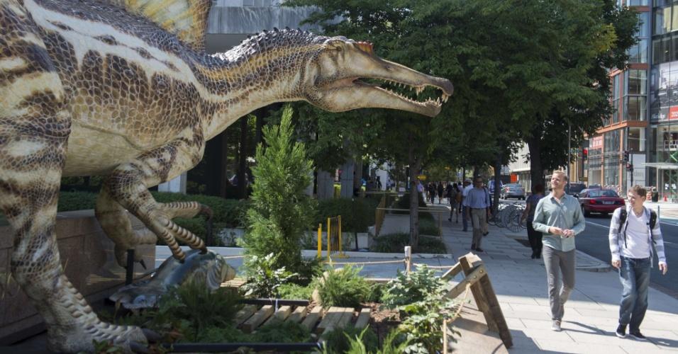11.set.2014 - Homens observam réplica em tamanho real do Spinosaurus, o maior dinossauro predador que já vagou sobre a Terra, em frente ao Museu Geográfico Nacional, em Washington DC, nesta quinta-feira (11). Uma nova exposição mostra os fósseis do Spinosaurus, descibertis há mais de 100 anos por paleontólogos alemães, mas destruídos por bombardeios em 1944, durante a primeira guerra mundial. Pesquisa divulgada nesta quinta-feira (11) afirma que esses carnívoros também eram aquáticos, qualidade rara entre os dinossauros