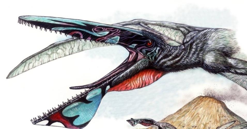 Nova espécie de pterossauro foi batizada de Ikrandraco avatar - draco em latim quer dizer dragão -, por ser semelhante aos predadores aéreos chamados