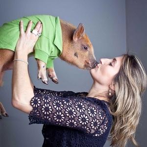 A publicitária Andrea Mendes, 35, é dona do Jamon; após sucesso no Instagram, Andrea e seu esposo idealizaram uma série animada sobre o suíno - Reprodução/Instagram/jamonthepig