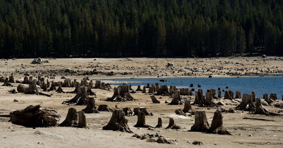 O lago Huntington transformou-se em uma grande superfície de areia e pedras, uma paisagem quase lunar, só quebrada pelos cais sem barcos e os pinhais verdes vizinhos, lembretes dos fortes danos da seca que a Califórnia vive há três anos