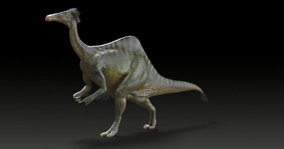 21.out.2014 - Deinocheirus mirificus, o maior membro do grupo conhecido como pássaros-dinossauros, é reconstituído nesta imagem divulgada nessa terça-feira (21). Cientistas afirmaram que dois esqueletos quase completos do animal de 70 milhões de anos mostraram que ele ostentava uma combinação de características pouco ortodoxas, nunca antes vistas em um dinossauro