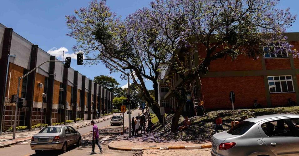 9.nov.2014 - Estudantes chegam para o segundo dia de prova do Enem 2014 no Centro Politécnico da UFPR, em Curitiba