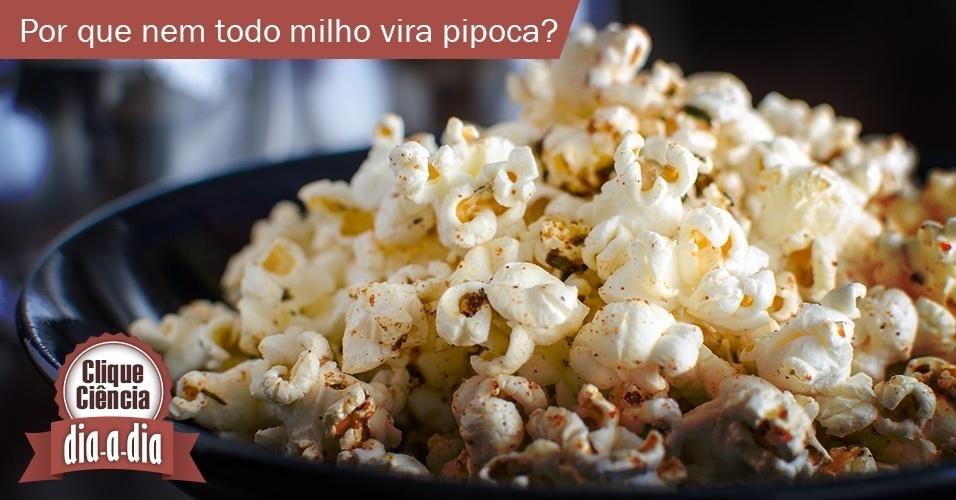 Clique Ciência: por que nem todo milho vira pipoca?