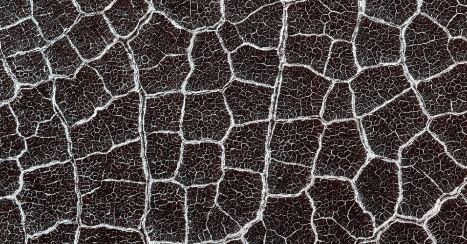 3.dez.2014 - De longe, o piso desta cratera de Marte parece um favo de mel gigante ou uma teia de aranha. As formas de interseção, ou polígonos, são mais comuns nas planícies ao norte do planeta. Com a curadoria de artistas, fotógrafos e editores de fotografia, a Nasa (agência espacial americana) reuniu uma série de imagens para compor a