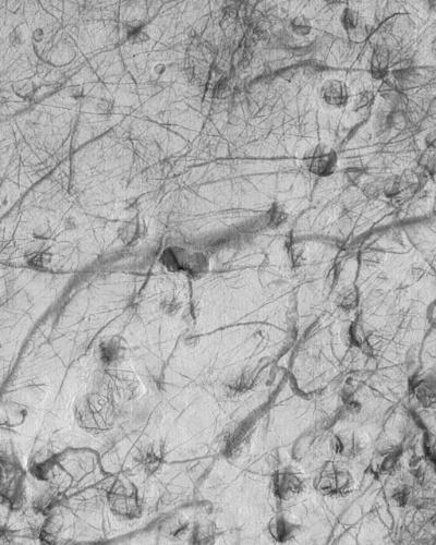 3.dez.2014 - Imagem retrata uma infinidade de estrias escuras criadas pela passagem de poeira durante o início do verão no hemisfério sul de Marte. Com a curadoria de artistas, fotógrafos e editores de fotografia, a Nasa reuniu uma série de imagens para compor a