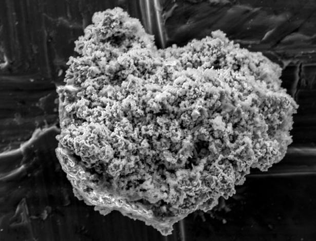 Uma única partícula de poeira de cometa foi coletada de um pedaço de gelo na Antártida, vista aqui com um microscópio