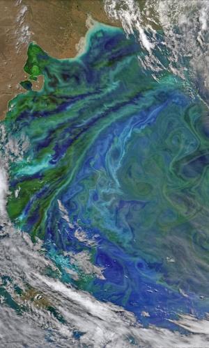 12.dez.2014 - O final da primavera e o início do verão trazem cores para o oceano Atlântico, ao largo da América do Sul, próximo à Argentina. A Patagônia Shelf Break é um local biologicamente rico, onde a poeira do ar da terra, correntes ricas em ferro e correntes das profundezas proporcionam uma recompensa de nutrientes para a vegetação do mar- o fitoplâncton. A imagem foi feita por um satélite no dia 2 de dezembro