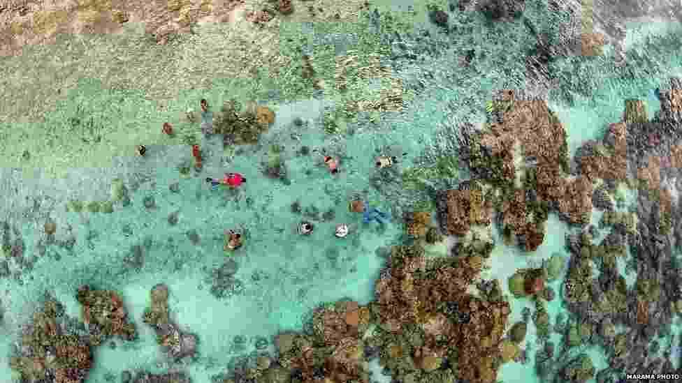 Esqueça fotos tiradas por câmeras analógicas ou celulares. A moda agora é usar drones -- veículos aéreos não tripulados -- para fazer registros. Confira na galeria a seguir algumas das melhores imagens feitas por essas pequenas aeronaves nos últimos 12 meses. (Coral Garden, ilha de Taha'a, Polinésia Francesa) - Marama Photo