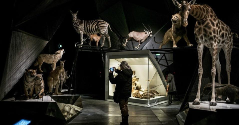 20.dez.2014 - Mulher tira fotografia de animais empalhados durante uma visita ao museu de Ciência e Arqueologia inaugurado em Lyon, na França. Projetado pelo arquiteto austríaco Coop Himmelb, o museu foi aberto ao público neste sábado (20)