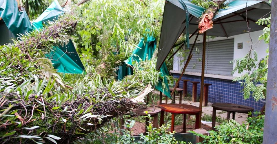 30.dez.2014 - Árvores caídas cobrem área de alimentação no Parque do Ibirapuera, na zona sul de São Paulo, nesta terça-feira (30). Equipes da prefeitura realizam a limpeza, poda e remoção de árvores que caíram após forte chuva na madrugada de segunda (29). O parque ficou fechado durante toda a manhã de ontem e abriu parcialmente no período da tarde. O parque foi totalmente reaberto na manhã de hoje