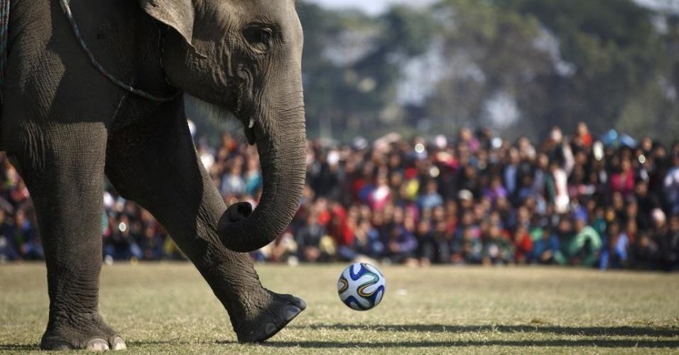 30.dez.2014 - Elefante corre para chutar bola durante partida de futebol entre os paquidermes em evento em Chitwan, no Nepal. As atividades esportivas com os animais incluem corridas e outros tipos de competições