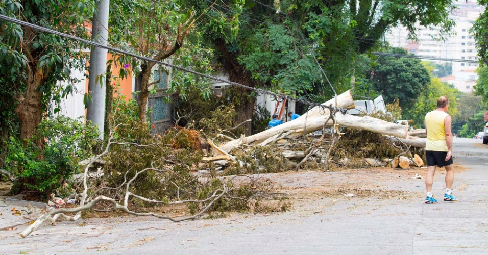 4.jan.2015 - Árvore que foi derrubada pela chuva na semana passada na alameda Piratinins, no bairro Planalto Paulista, na zona sul de São Paulo, continua bloqueando parte da calçada e de entradas de garagens, neste domingo (4)