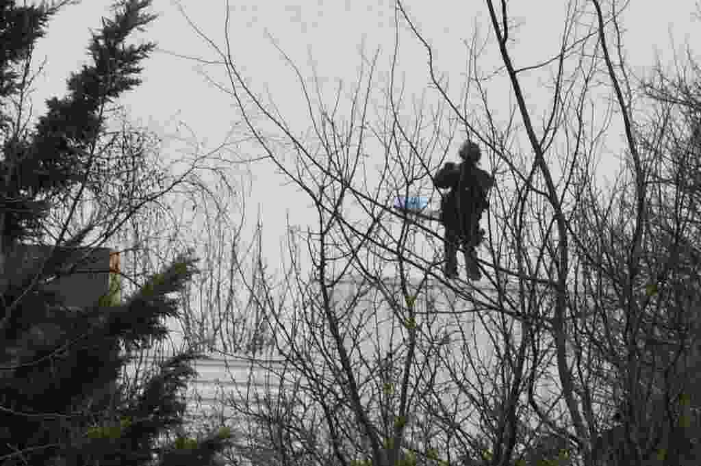 """9.jan.2015 - Policial se posiciona em uma árvore em frente a um prédio onde Chérif e Saïd Kouachi, supostos autores do massacre da quarta-feira na redação da revista """"Charlie Hebdo"""", estariam entrincheirados, na cidade de Dammartin-en Goële, a aproximadamente 40 quilômetros de Paris, na França - Dominique Faget/AFP"""