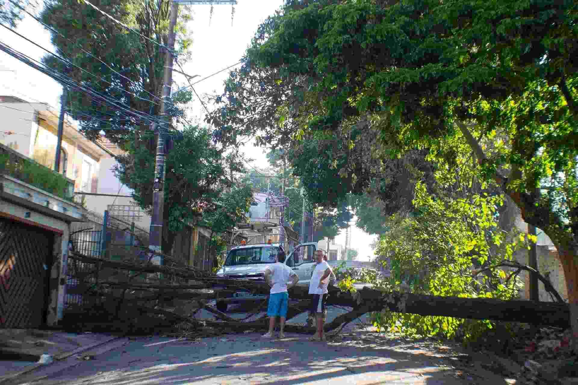 9.jan.2015 - Queda de árvore atinge uma casa na rua deputado João Bravo Caldeira, no bairro do Planalto Paulista, na zona sul de São Paulo. Os moradores estão 16h sem energia elétrica - Marcelo Gonçalves/Sigmapress/Estadão Conteúdo