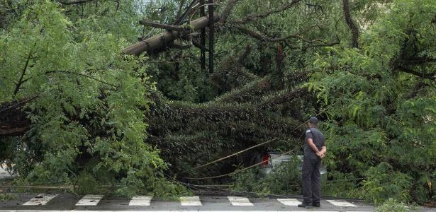 Árvores e postes caíram sobre carros na avenida Rio Branco, no Centro, na segunda (12) - Daniel Teixeira/Estadão Conteúdo