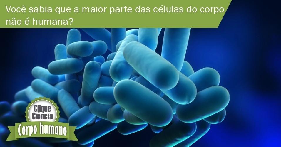 Clique Ciência: você sabia que a maior parte das células do corpo não é humana?