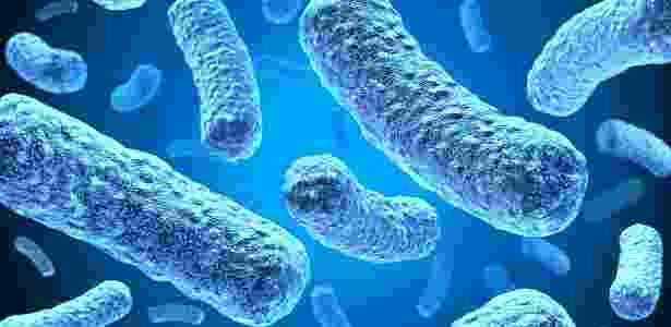 Micróbios infestam nosso corpo: mas sem eles, ninguém é tão humano - Thinkstock