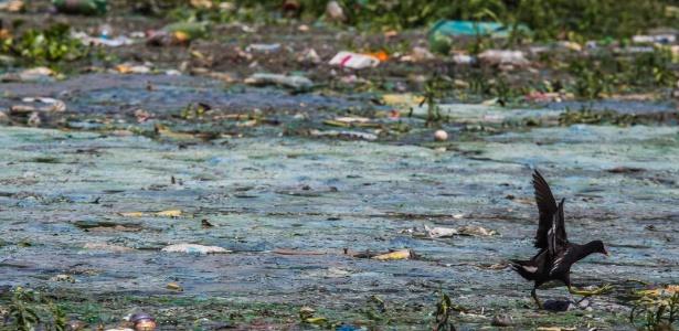 Das cem propostas, a Sabesp classificou 26 como promissoras, sendo que nove delas envolvem a represa Billings (foto) - Danilo Verpa/Folhapress