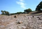 Estiagem seca lagoas e destrói gramado de parques no Rio - Júlio César Guimarães/UOL