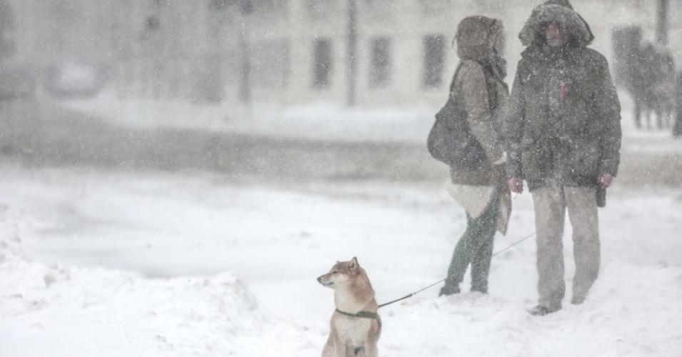 9.fev.2015 - Um cão espera enquanto o seu dono conversa com uma mulher em uma rua coberta de neve, em Viena, na Áustria, nesta segunda-feira (9)