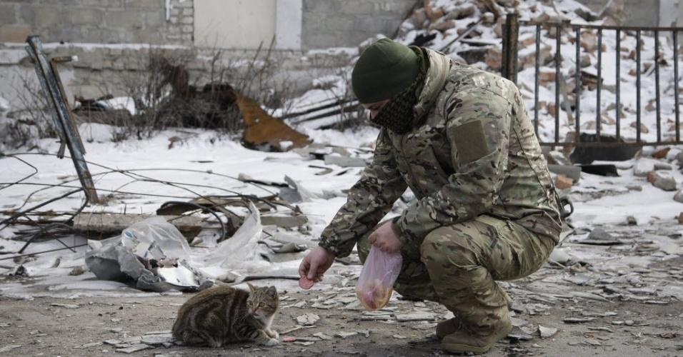 19.fev.2015 - Um soldado separatista pró-Rússia alimenta um gato nas ruas da cidade de Uglegorsk, na área de Donetsk, nesta quinta-feira (19). O presidente da Ucrânia, Petro Poroshenko, afirmou que a Rússia, por se tratar de um