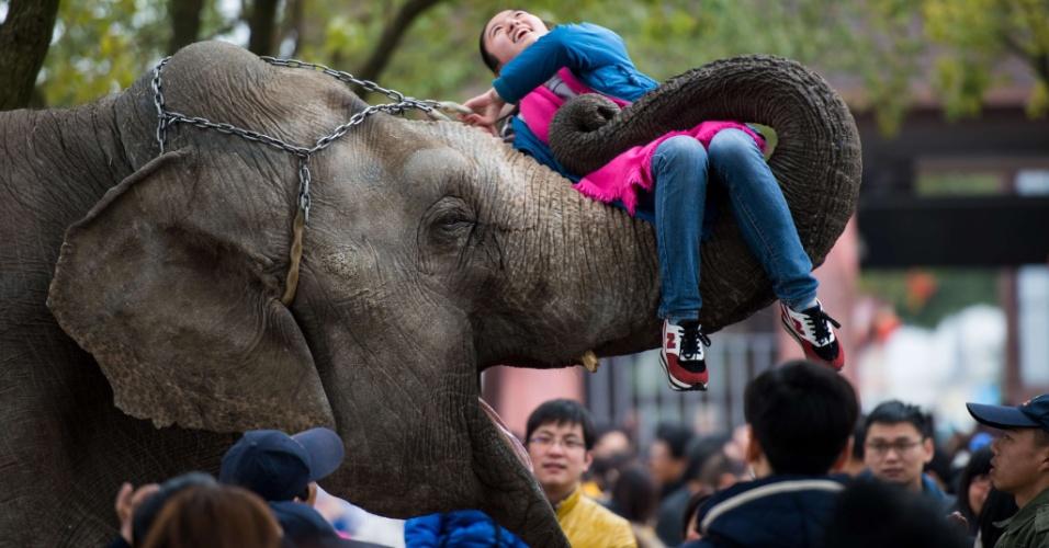 24.fev.2015 - Garota é suspensa por elefante durante apresentação no Parque de Animais Selvagens, em Xangai (China), nesta terça-feira (24). O local é uma das principais atrações do país durante as celebrações do Ano-Novo chinês