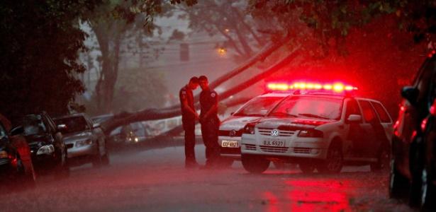 Árvore caída na rua onde motorista morreu eletrocutado durante a tarde desta quarta (25) - Eduardo Knapp/Folhapress