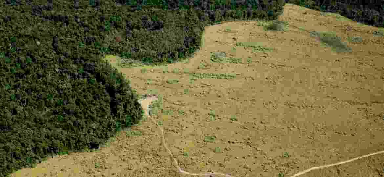Vista aérea de área de preservação permanente com enorme parte desmatada em Nova Ubiratã (MT) - Fernando Donasci/Folhapress