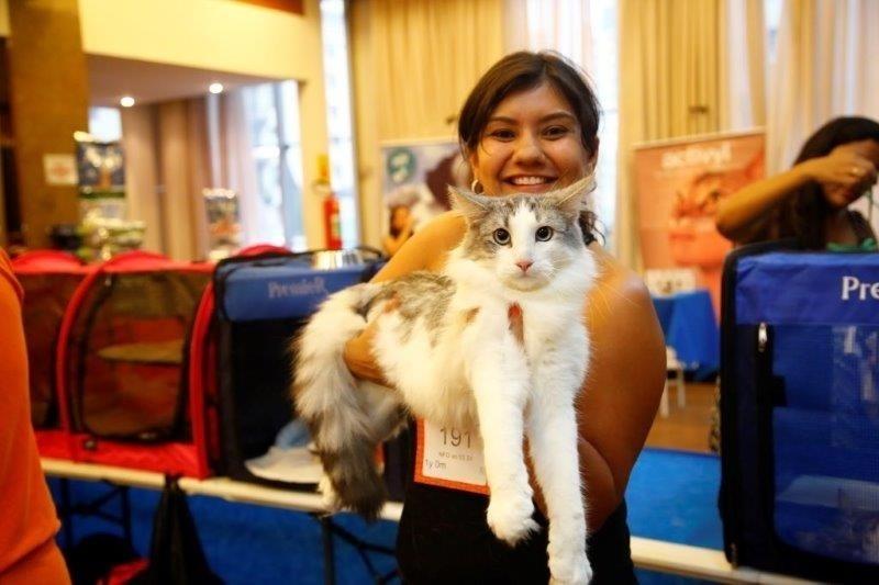 28.fev.2015 - Dona exibe seu gato durante a 156ª Exposição Internacional de Gatos, organizada pelo CBG (Clube Brasileiro do Gato), na tarde deste sábado (28). O evento acontece no Club Homs, na avenida Paulista, e vai até este domingo (1º)