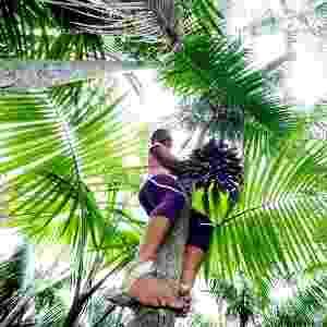 10.mar.2015 - Edina Siqueira diz que a atividade não é esforço algum. Na ilha Jussara, diferentemente de outras comunidades da região, as mulheres têm sido responsáveis pelo manejo e pela colheita do açaí. O açaí é uma das principais fontes de renda para os moradores da região - Sidney Oliveira/AG Pará