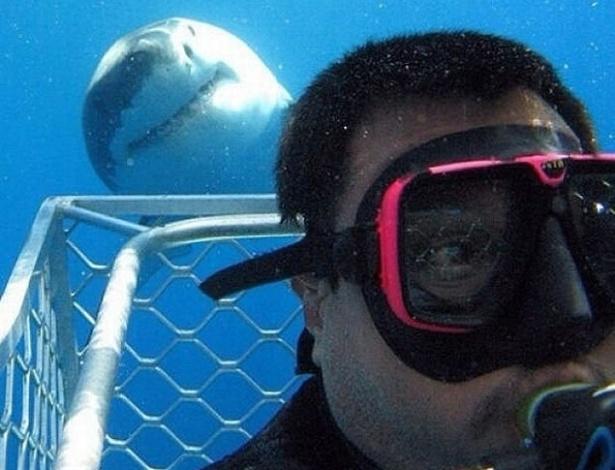 """11.mar.2015 - Até que ponto vale a pena arriscar a vida por um selfie? Sem qualquer receio ou preocupação, o mergulhador de Hamilton (Escócia) Gareth Brown não poupou esforços para fazer uma fotografia literalmente """"animal"""". A sorte foi ter contado com um simpático tubarão, acostumado com os flashes. Não só poupou a vida do escocês --que saiu ileso dessa experiência e teve a oportunidade de postar a sua façanha em seu perfil no Twitter--, como sorriu para a câmera."""