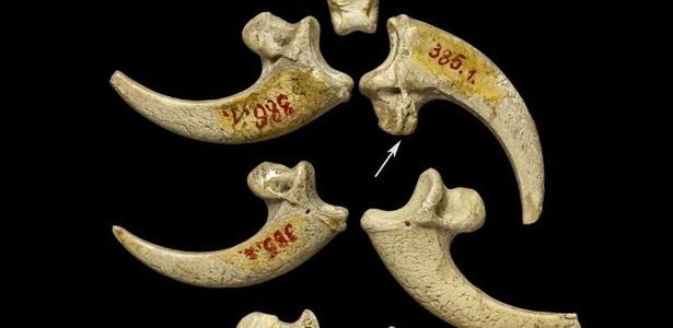 ae21ac45cb9 Neandertais criaram primeiras joias da humanidade há 130 mil anos -  05 04 2015 - UOL Notícias
