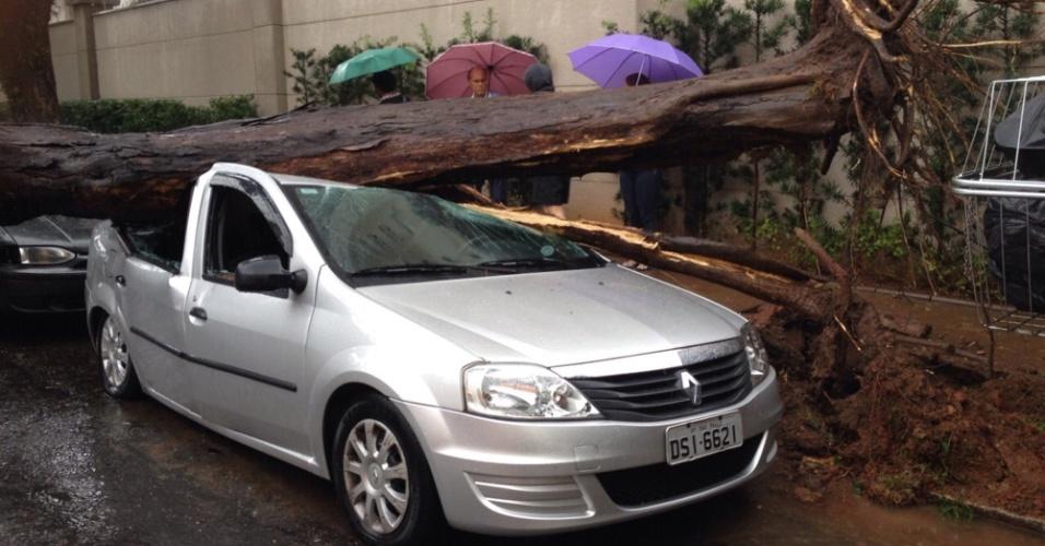16.mar.2015 - Uma árvore caiu sobre um carro na rua Leais Paulistanos, no Ipiranga, região sudeste de São Paulo, após o temporal que atingiu a cidade