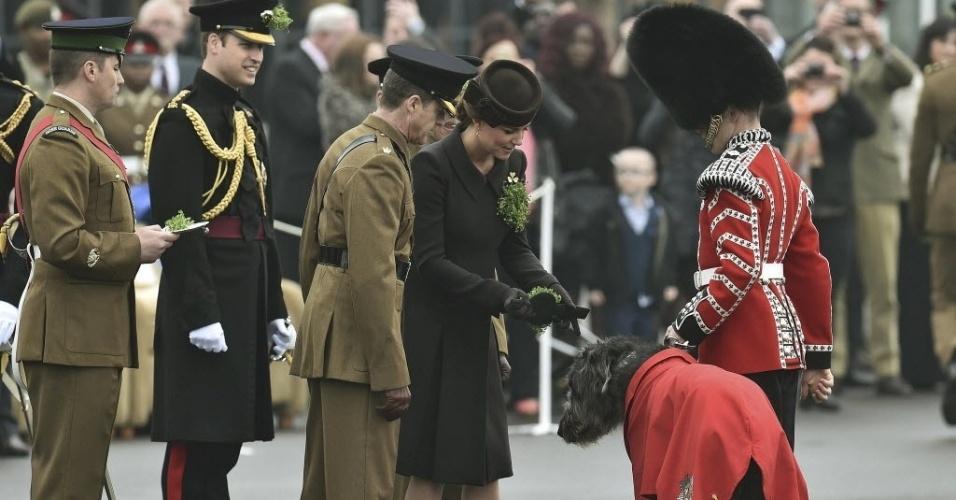 17.mar.2015 - Catherine, duquesa de Cambridge, entrega um ramo de trevo para o mascote Domhnall do 1º Batalhão Irlandês, da raça lébrel irlandês, durante visita com o príncipe William a parada do Dia de São Patrício em Aldershot, no sul da Inglaterra