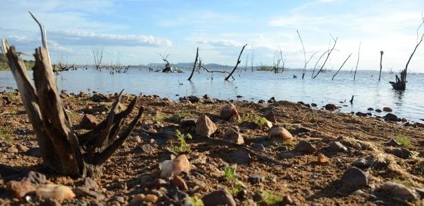 Vivemos hoje um período de seca no país, principalmente na região Nordeste, onde a Bahia sofre com a perda de rebanhos, por causa da falta de chuvas