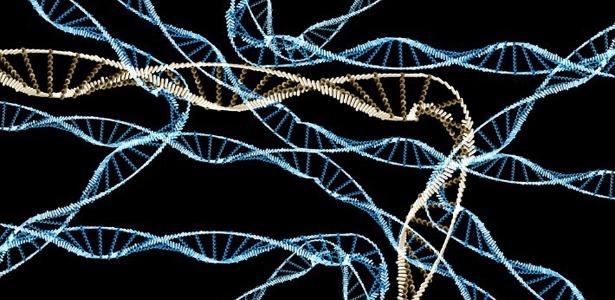 DNA foi usado para infectar e tomar controle de um computador