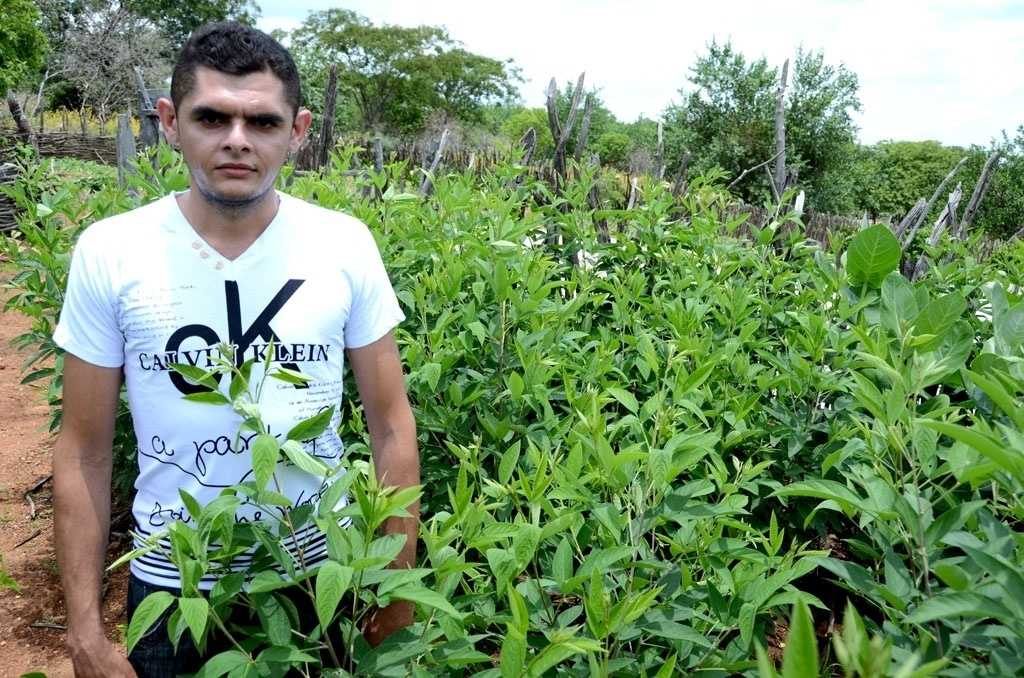 20.mar.2015 - O agricultor Josivan Geraldo Carvalho Macedo, 28, usa água de cisterna de 52 mil litros --chamada de cisterna calçadão-- para cultivar frutas e verduras. Ele mora na zona rural de Padre Marcos (a 384 km de Teresina)