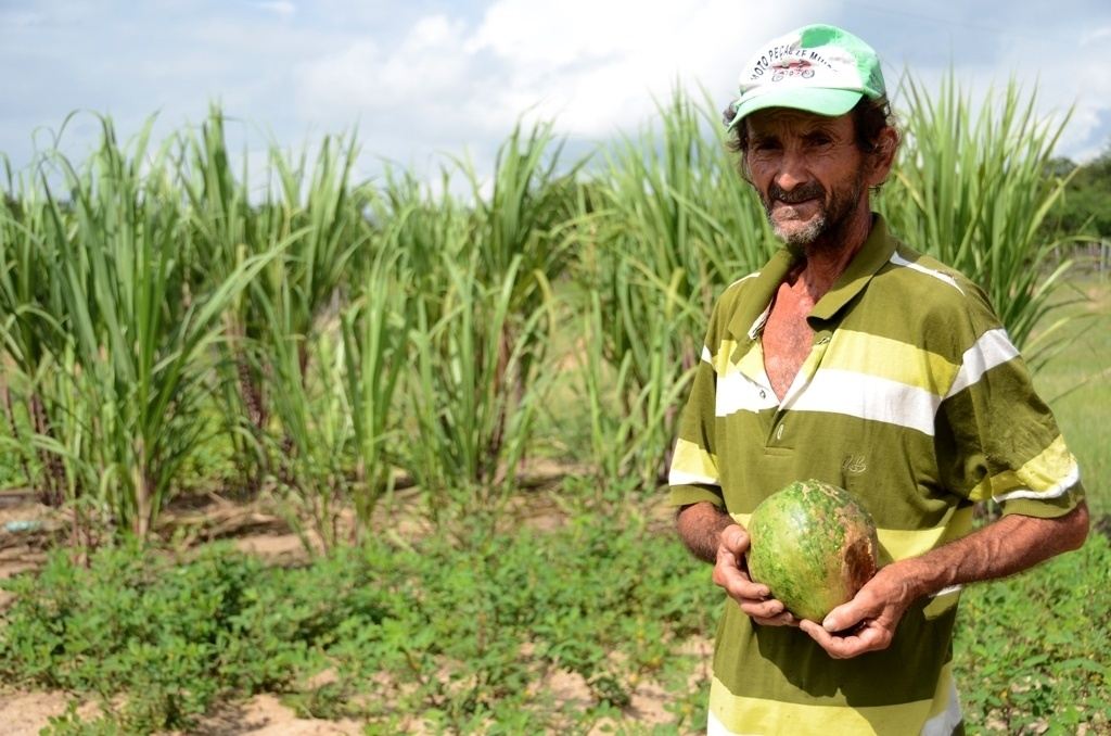 25.mar.2015 - O agricultor José Teixeira Gomes, 62, morador de Jaicós (a 379 km de Teresina), ganhou há cerca de um ano um aliado na batalha que é conseguir água para a agricultura: uma 'barragem subterrânea'
