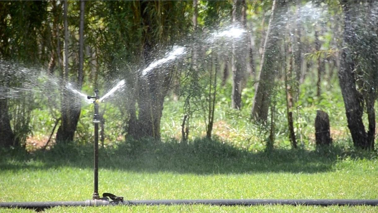 26.mar.2015 - A irrigação por aspersão é feita por meio do lançamento de jatos de água no ar. Esse método é alvo de críticas por usar muita água