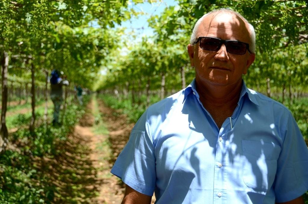 26.mar.2015 - O agricultor Paulo Ramos gasta atualmente menos água na irrigação de sua plantação de uva, por gotejamento, na zona rural de Petrolina (a 714 km do Recife), em relação a 20 anos atrás, quando a rega era feita por aspersão