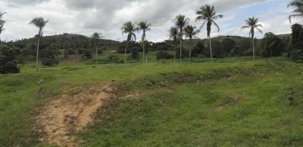 Local onde foi encontrado o forte, que tem 473 m², muralhas de terra e está coberto pela vegetação