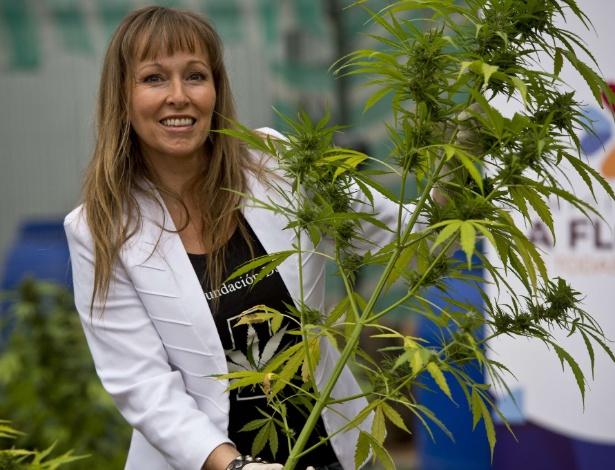 7.abr.2015 - Ana Maria Gazmuri, presidente da Fundação Daya, uma organização chilena sem fins lucrativos, mostra pé de maconha cultivada em laboratório de Santiago