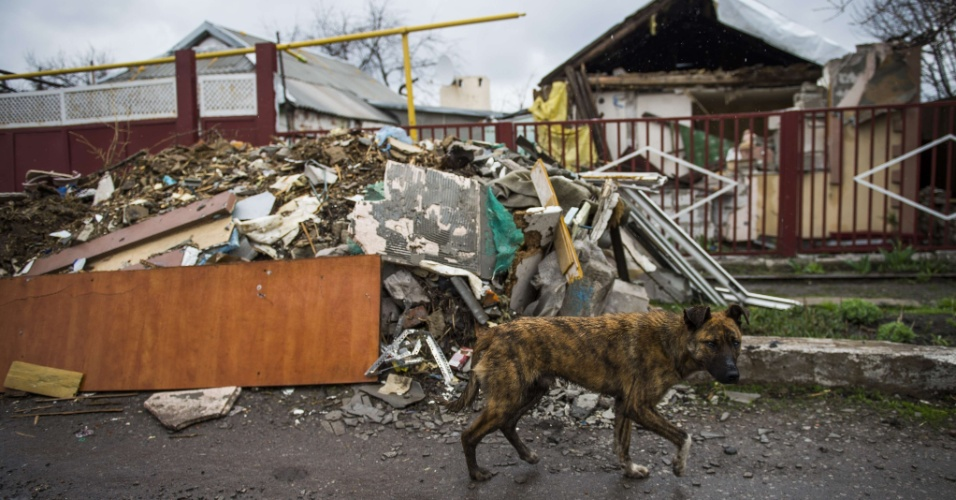 19.abr.2015 - Cachorro passa por casa destruída próxima ao aeroporto de Donetsk, na Ucrânia, alvo de conflito entre nacionalistas e militantes separatistas. O bairro, chamado Jabunki, é em maior parte deserto, apenas com a presença de desabrigados e matilhas de cães. Detonações de bombardeios ainda são ouvidas com regularidade na região, apesar do acordo de cessar-fogo