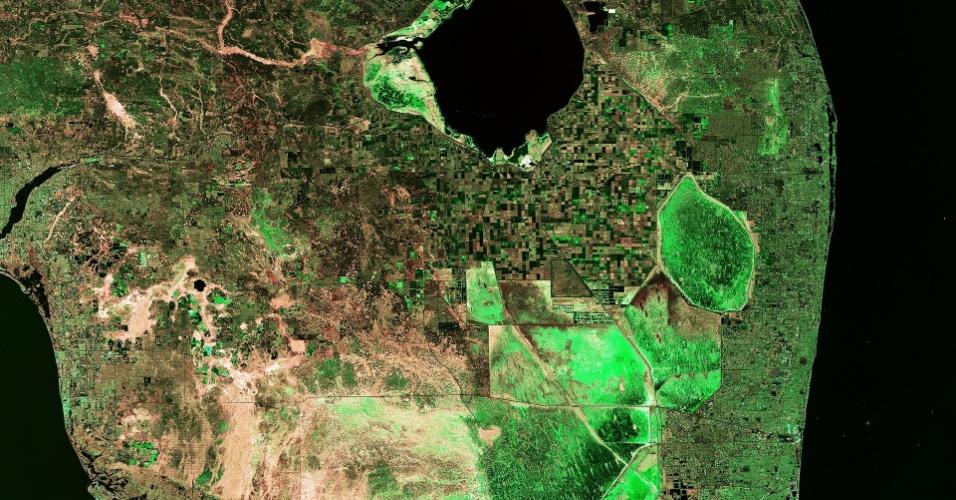 24.abr.2015 - Parte do estado norte-americano da Flórida é retratada em imagem do satélite Sentinel-1ª, da Agência Espacial Europeia. A península fica entre o Golfo do México e o oceano Atlântico. O grande volume de água visto como 'um buraco escuro' no alto é o lago Okeechobee, raso e de água doce, com apenas quatro metros de profundidade. Na parte de terra, no extremo da imagem, está localizado o Parque Nacional de Everglades, conhecido por sua área subtropical